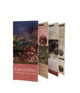 Les crabes des Pertuis Charentais